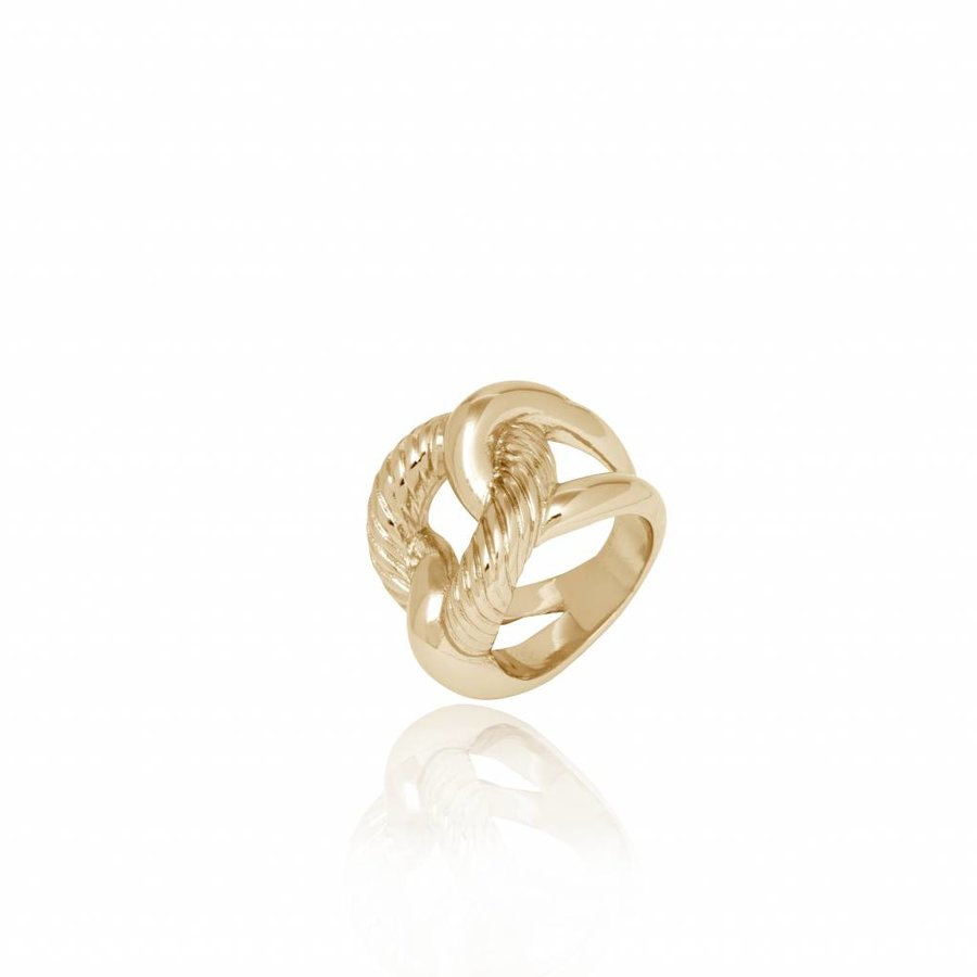 Profile gourmet ring - Champagne goud