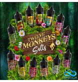 Twelve Monkeys Twelve Monkeys (DE) 10ml Nic Salt 20mg