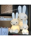 Nijntje Eerste Licht / Miffy First Light