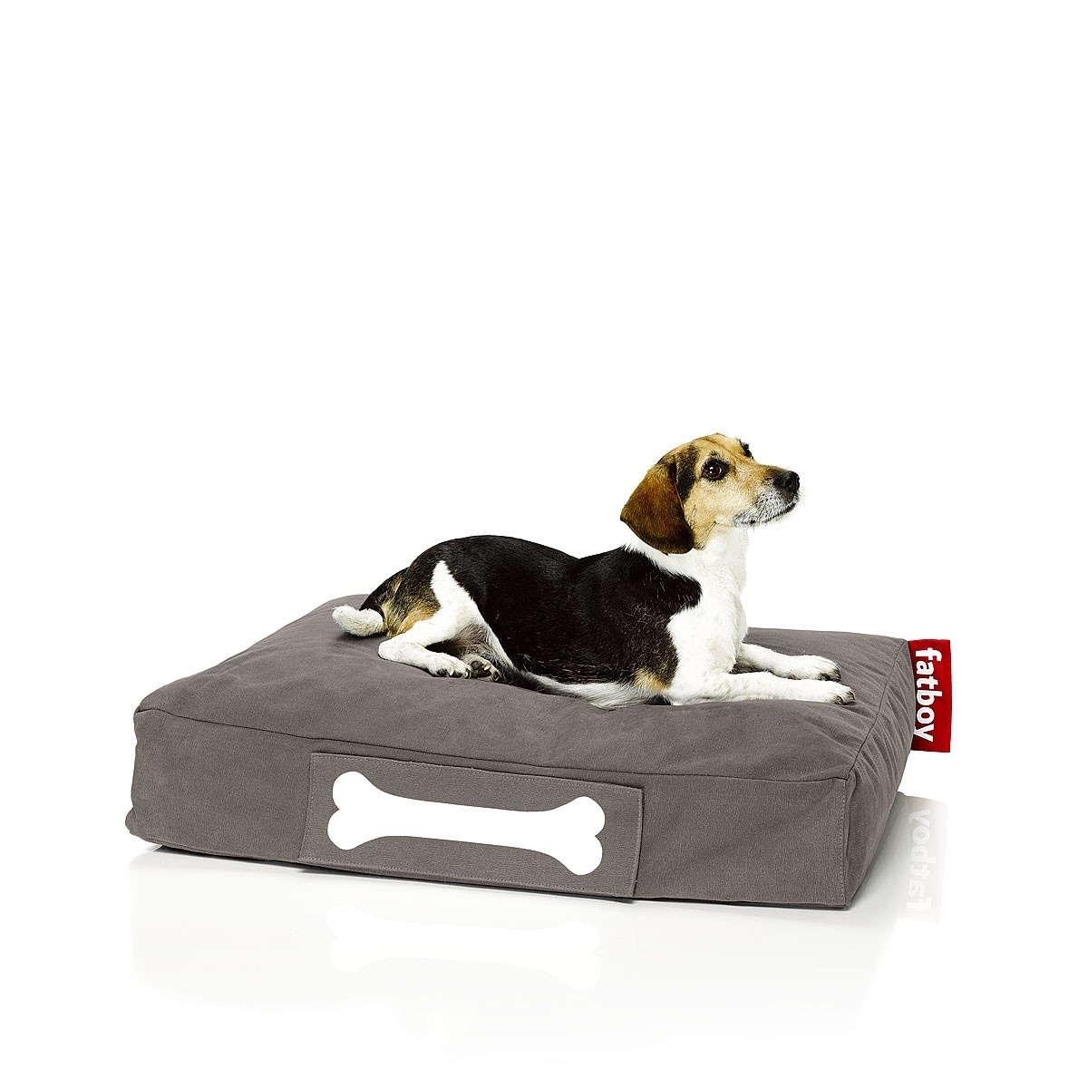 FATBOY Doggielounge