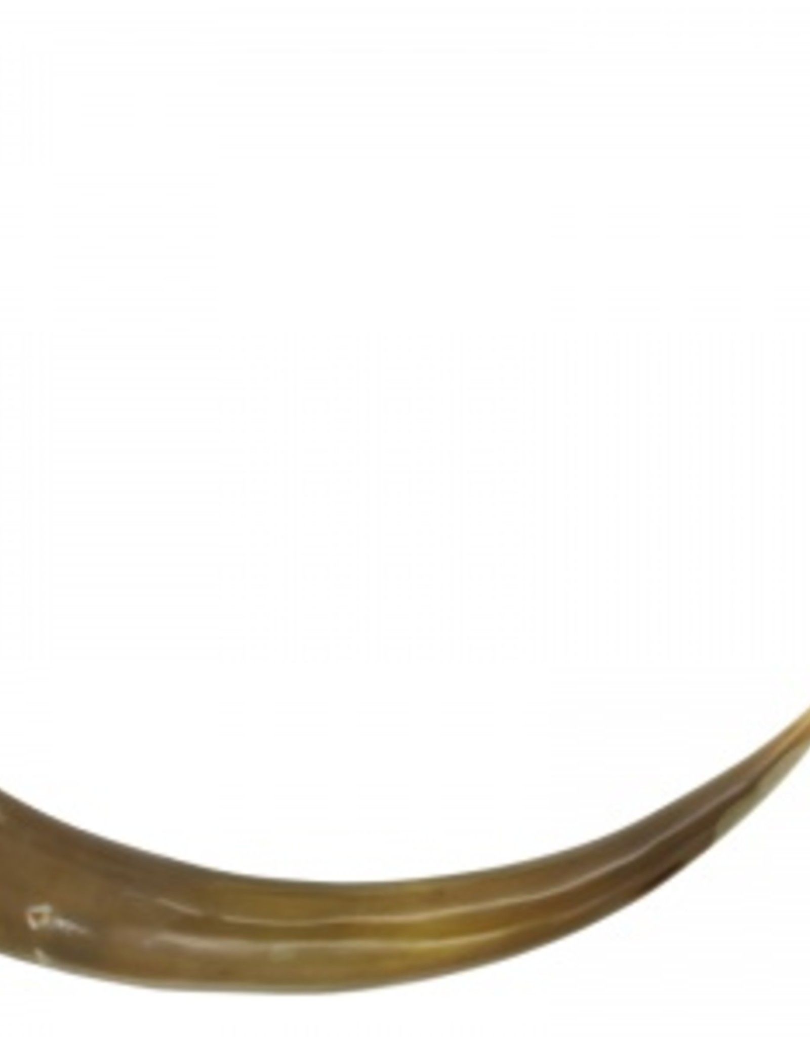 Lifestyle buffalo horn L