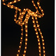 DecorativeLighting Slangverlichting ster 62 cm