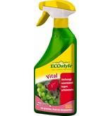 Ecostyle Vital 500 ml gebruiksklaar