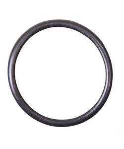 O-ring voor om pomphuis