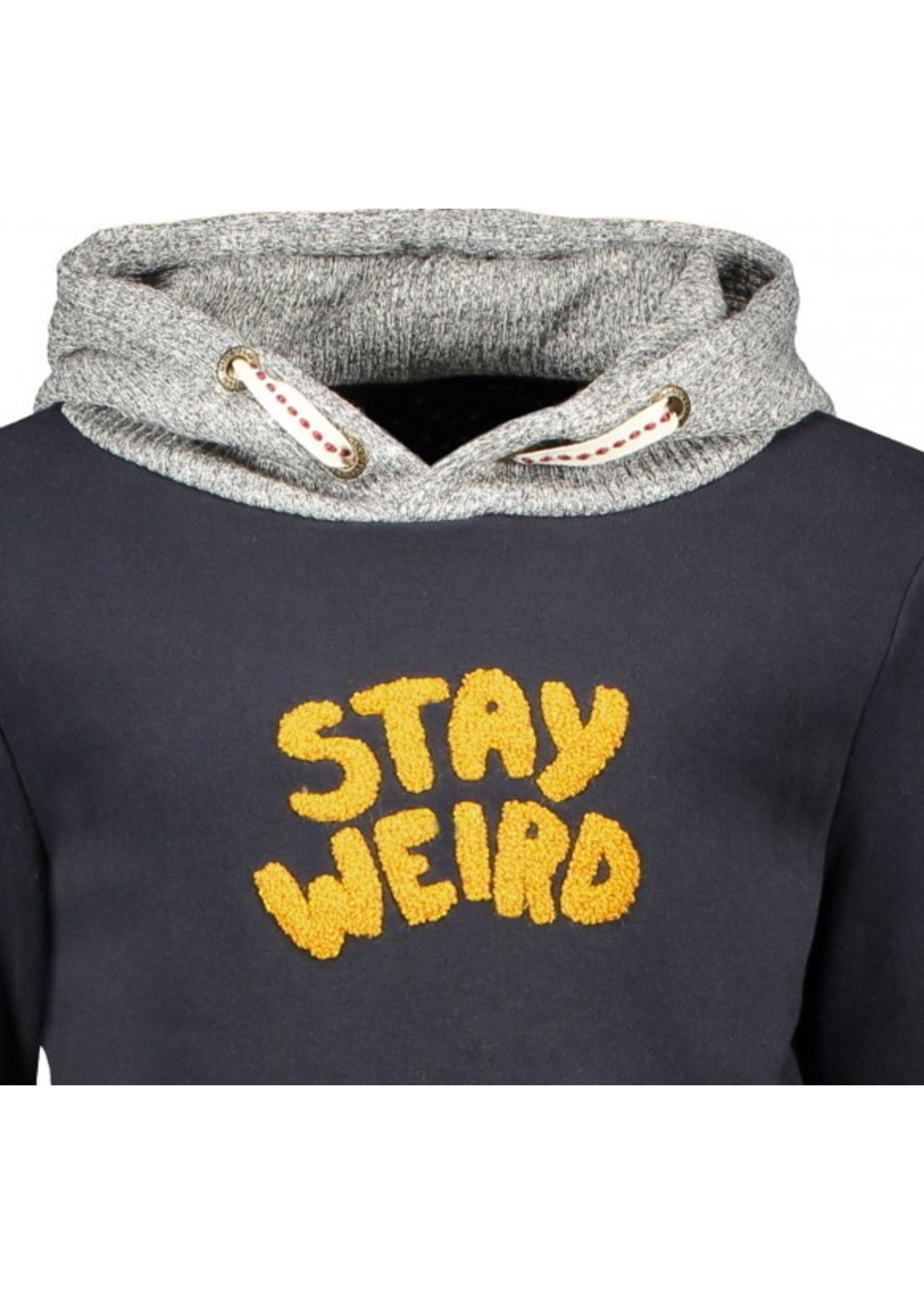 Like Flo hooded sweater maat 104 t/m 140