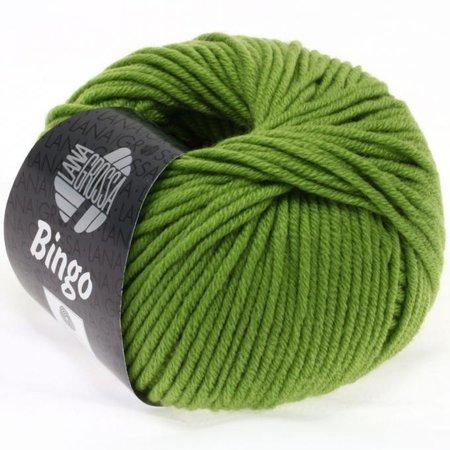 Lana Grossa Bingo 088 - Appelgroen