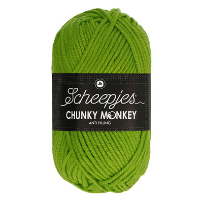 Scheepjes Chunky Monkey 2016 - Fern