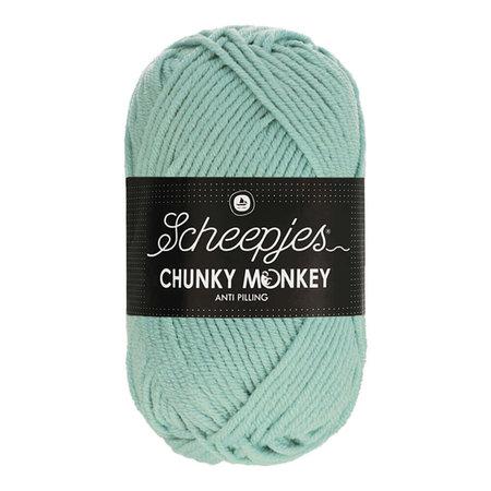 Scheepjes Chunky Monkey Mist (1820)