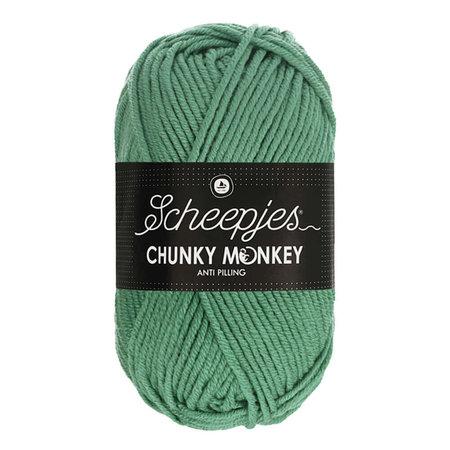 Scheepjes Chunky Monkey Eucalyptus (1725)