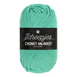 Scheepjes Chunky Monkey Aqua (1422)