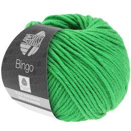 Lana Grossa Bingo groen (737)