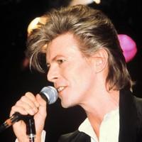 De biografie van: David Bowie