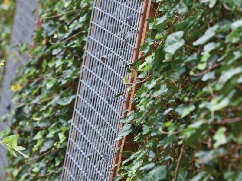 Tuindeco Gegalvaniseerd Gaas voor Schanskorf 180x90cm