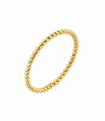 Twisted ring steel - gold