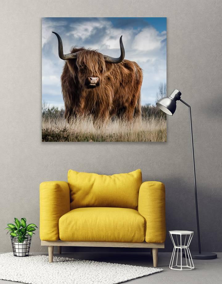 Bull 5mm print - fraaie glas look van jouw foto's