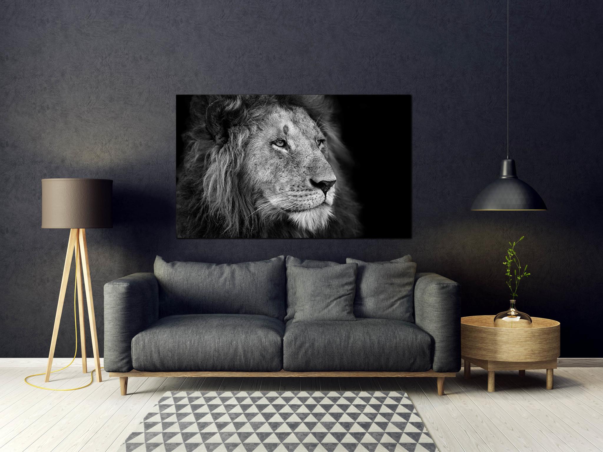 Leeuw in zwart/wit