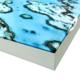 Stilleven met appels op delfs blauwe schaal - Willem de Zwart
