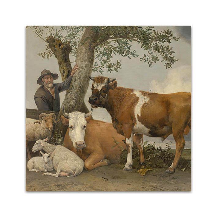 De stier - Paulus Potter op dibond