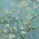 Amandelbloesem van Van Gogh