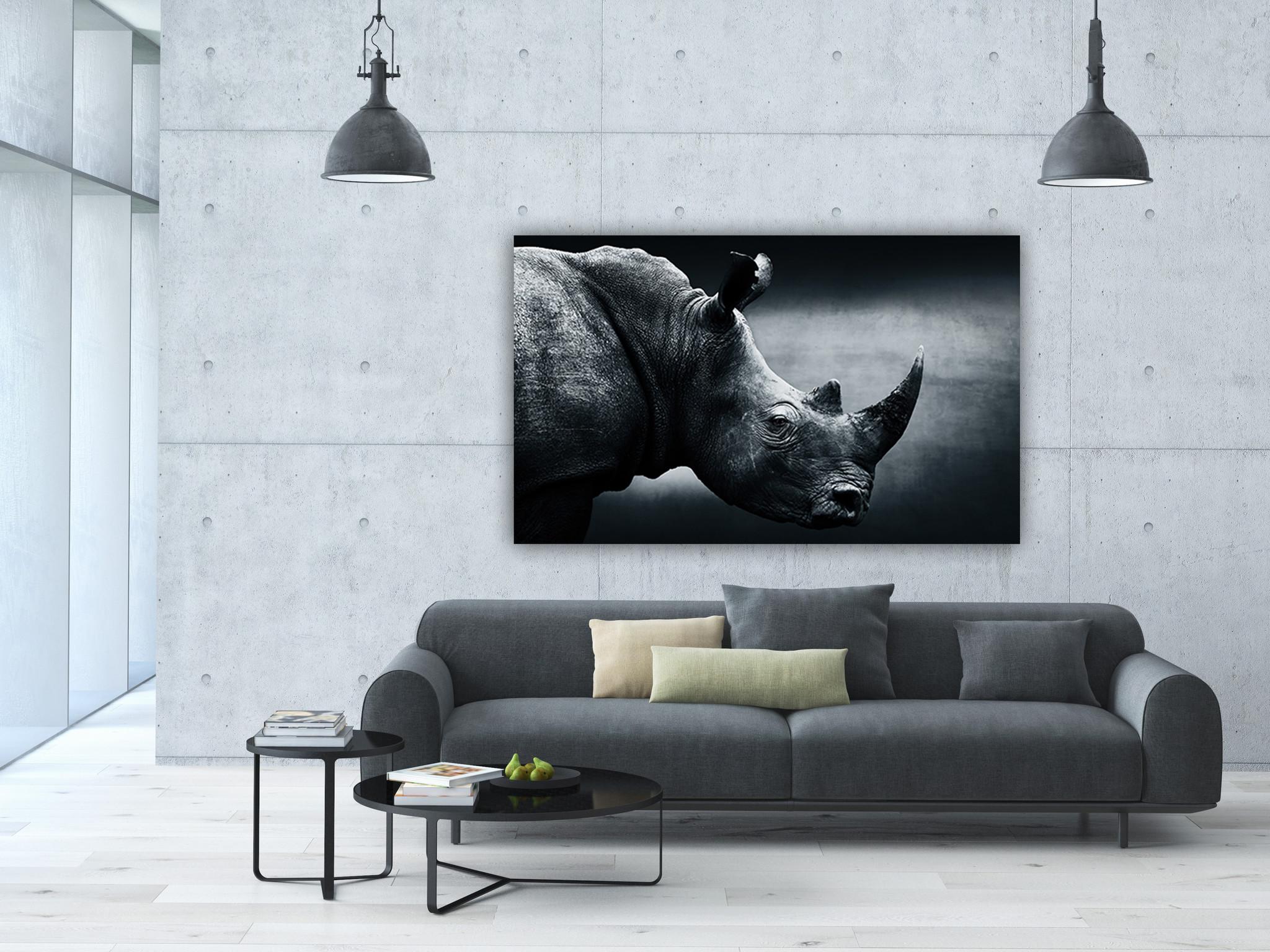 Neushoorn in zwart/wit