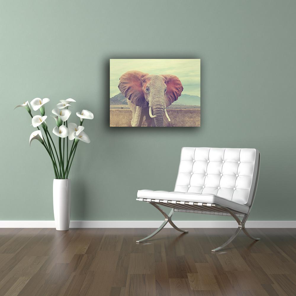 Wilde olifant op dibond