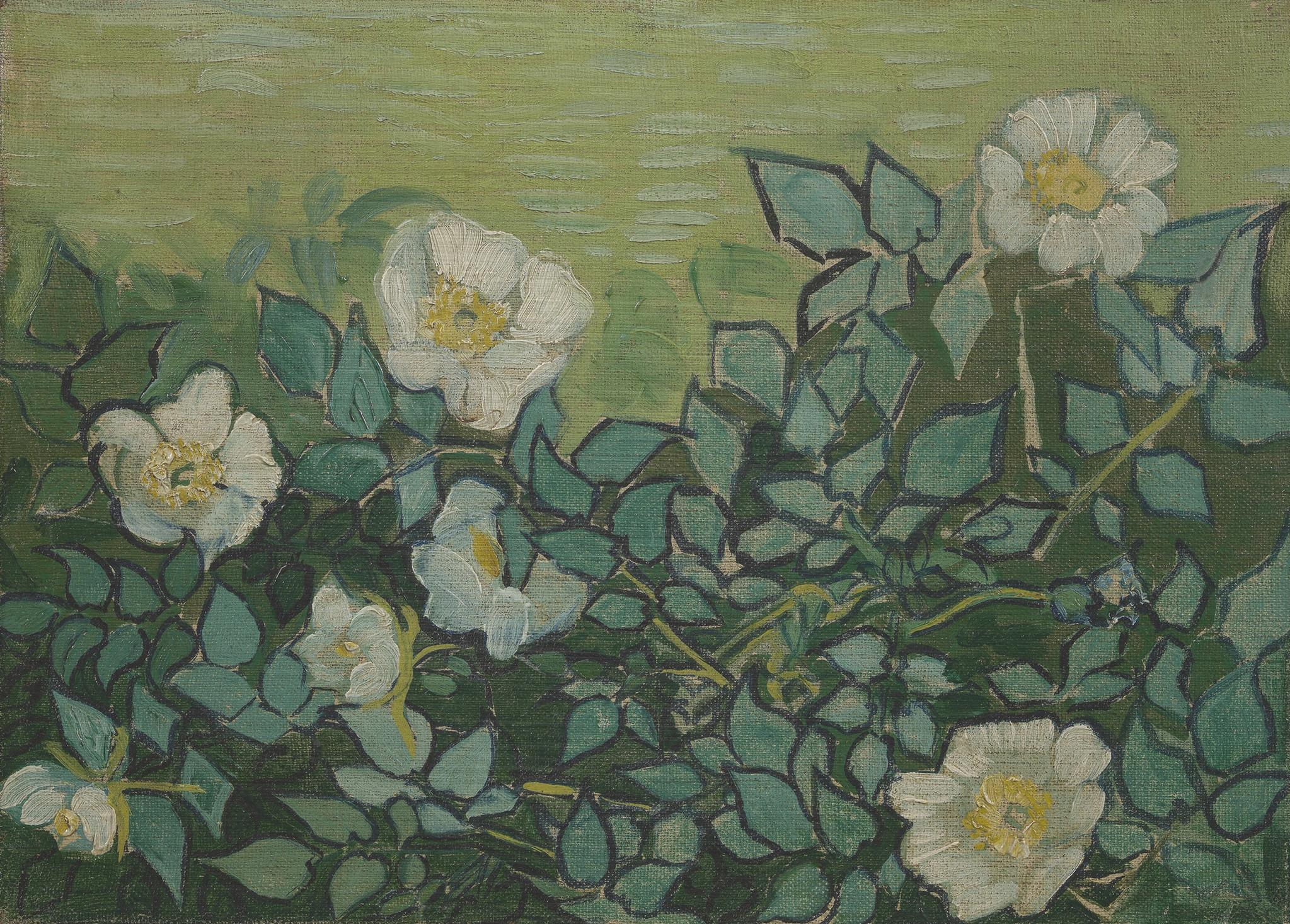 Wilde Rozen - Van Gogh op Dibond