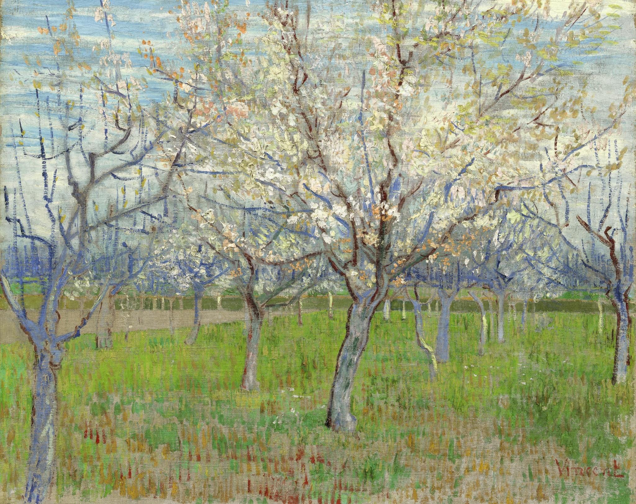 Roze Boomgaard - Van Gogh op Plexiglas