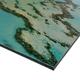 Pelargonium-M. De Gijselaar op dibond