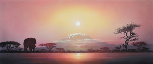 African Night | 32 x 76 cm | Photo satin paper