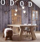 Industriële lamp - Ludo - gepolijst- small