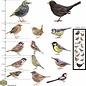 Walldecor Tuinvogel raamstickers