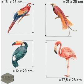 Walldecor Vogelbescherming raamstickers 4 tropische vogels