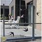 Walldecor Zwaluw vogelbescherming raamstickers set van 6 vogelstickers