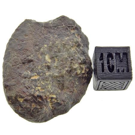 Individueel georiënteerde NWA 869 meteoriet