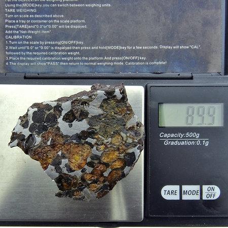 Pallasiet meteoriet uit Habaswein Kenia