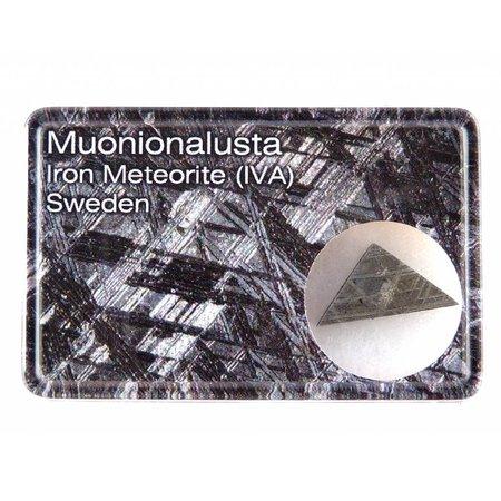 Geëtste Muonionalusta meteoriet in cadeau doosje