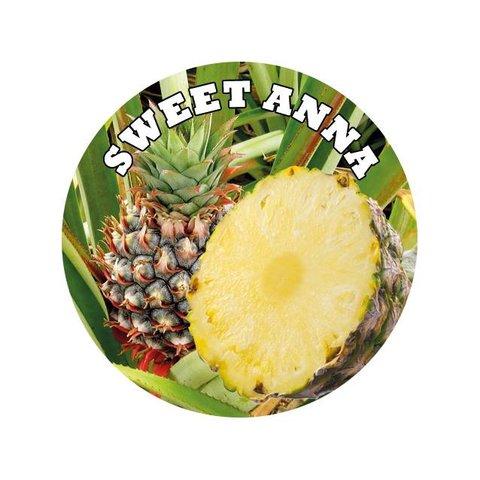 OVERDOSED xxx Ananas Devil Inside Shake&Vape E-Liquid Base