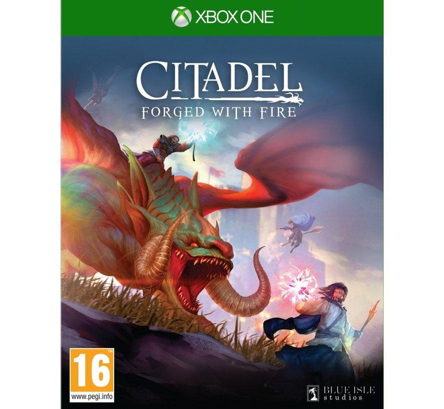 Citadel: Forged with Fire kopen