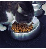 Dr Catsby feeding bowl for cats