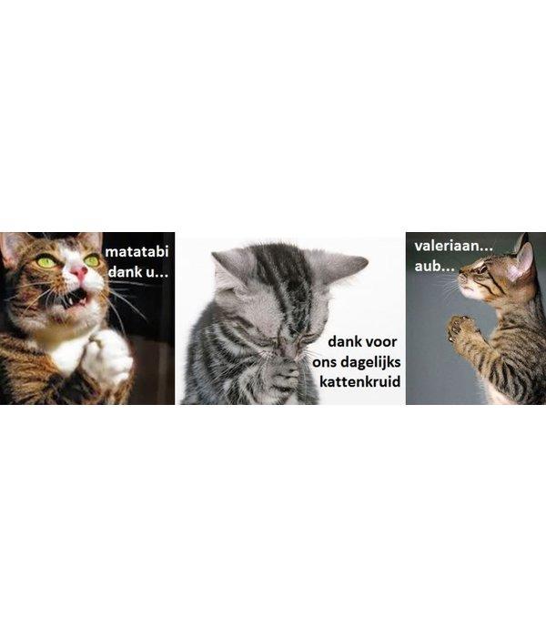 Gratis Tester: Kattenkruid, Valeriaan, Matatabi