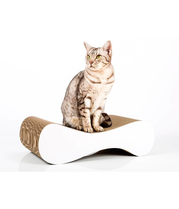 Cat-on Le Ver (2 sizes)
