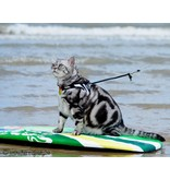 Tre Ponti Liberta cat harness Animal Fashion