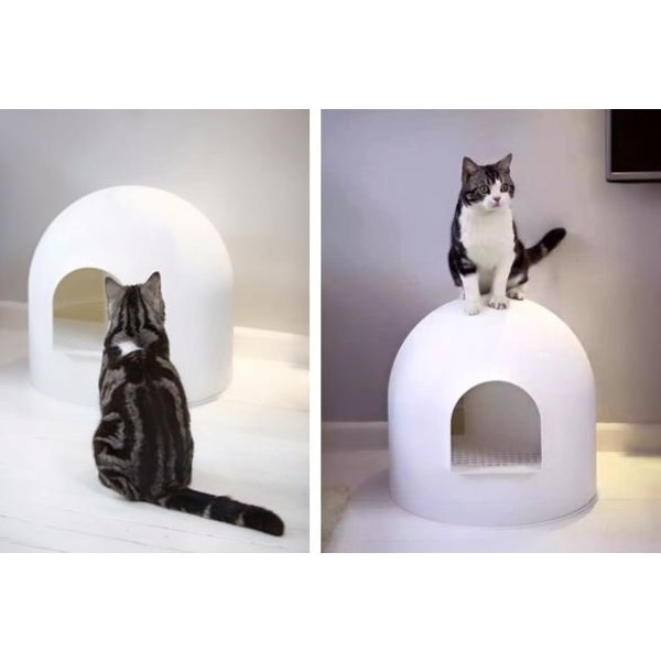 Igloo litter box