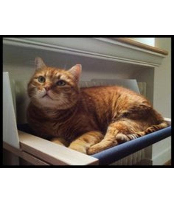 Woozy Cat Hammock
