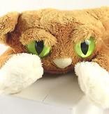 Lanky Cats