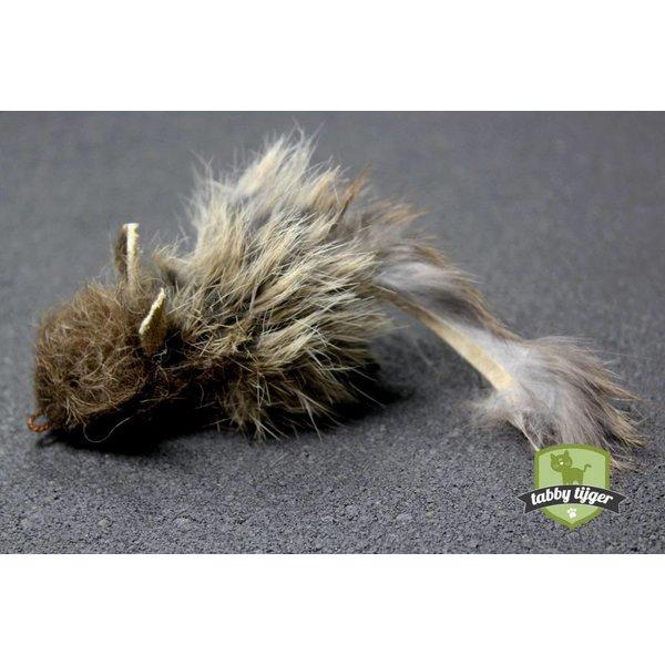 Rabbit-rat (Konijnratje)