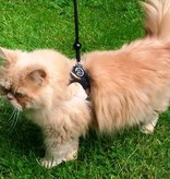 Info Page: Training harness