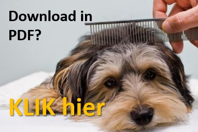 Download de tips vachtverzorging honden