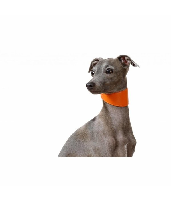 COLLAR SOFT GLAMOUR Sighthound