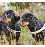 Tre Ponti Fibbia Verstelbaar Hondentuig